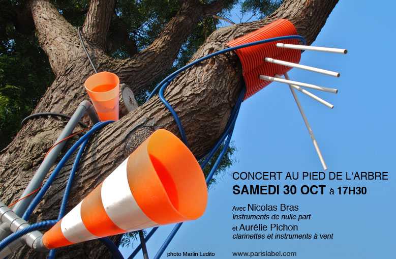 land art urbain à paris : concert dans l'arbre musical de nicolas bras, organisation Paris Label / Paule Kingleur