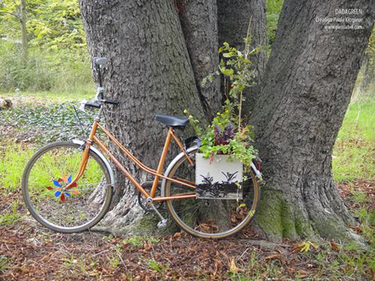 Dadagreen en balade au bois de Vincennes ! Paule Kingleur / Paris Label