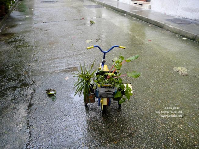 Préparation des tricycles jardins pour la Greenpride 2012, sur une idée de Paule Kingleur... mini-jardins réalisés ici avec des boites de conserve