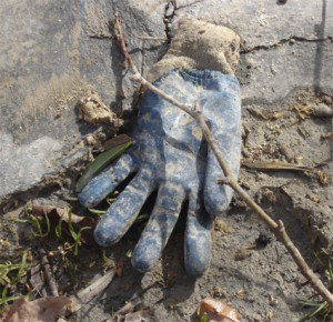gant bleu au soleil