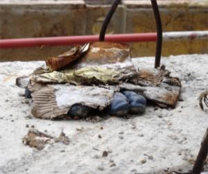 gant bleu enfoui - chantier tramway paris - prte de montreuil