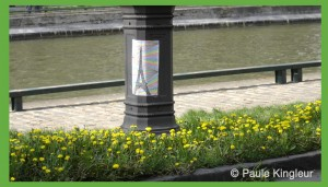 pissenlits sur quai du canal saint martin 10e