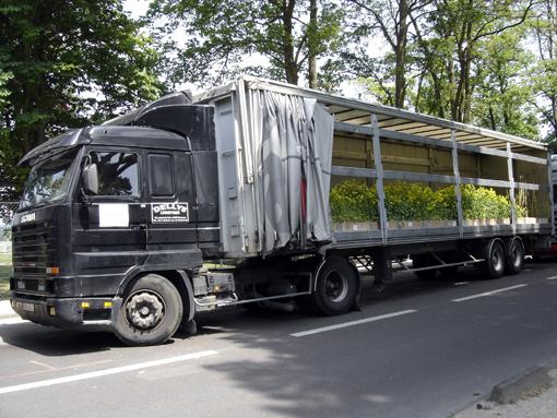 """camion et moutarde - """"Nature Capitale"""" aux champs elysées paris 2010 - photo paule kingleur"""