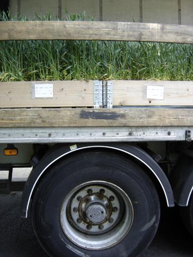 camion planté avec des plantes ! journée biodiversité 2010 à paris aux champs elysées - photo paule kingleur