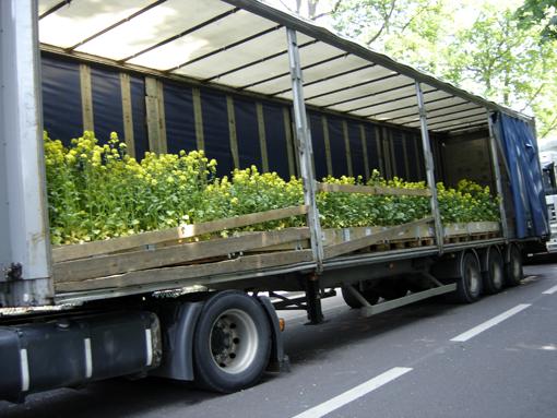 """camion avec moutarde en attente de """"Nature Capitale"""" aux champs elysées - photo paule kingleur"""