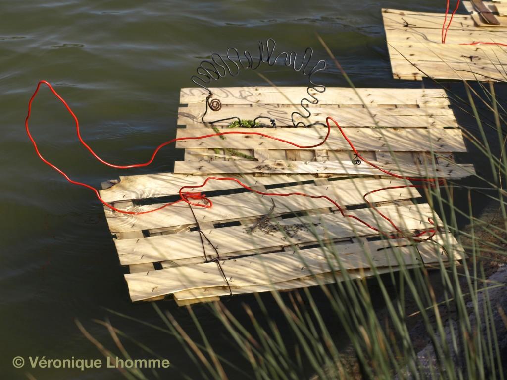 ecoradeau renard et hérisson, paris label biodiversité 2010 au lac daumesnil