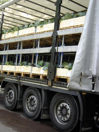 transport de choux pour la journée biodiversité aux champs elysées à paris - photo paule kingleur