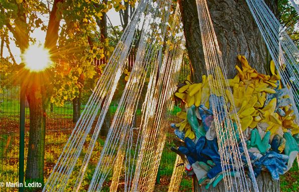 L'arbre et les gants - Installation Paule Kingleur