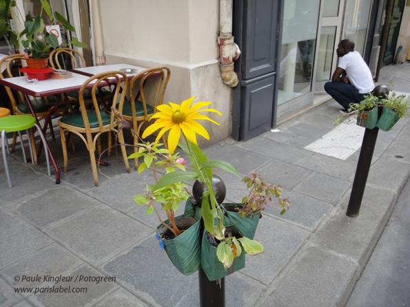 """Potogreen fleuri devant l'excellent restaurant-librairie """"Chimera Yakamoz"""" de la rue Beauregard : accueil et gastronomie au top !"""