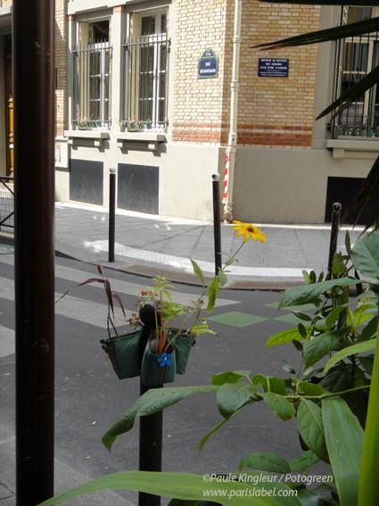 "Potogreen devant le restau ""Chimera Yakamoz"" de la rue Beauregard (2e)"