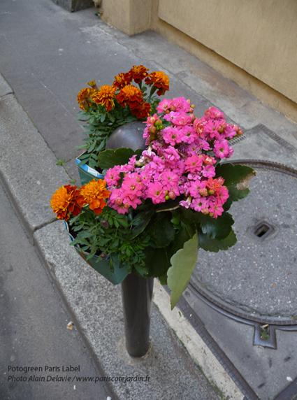 Potogreen ® Paule Kingleur - Photo Alain Delavie - Potogreen à voir dans les rues du 2e
