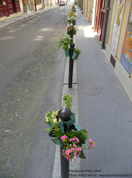 Potogreen : alignement sur trottoir rue du hanovre près de la creperie traditionnelle de Christina - Potogreen® Paule Kingleur