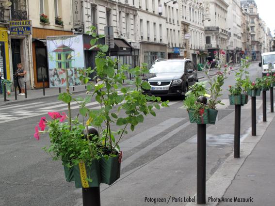 Potogreen du Jardin Nomade devant Dédé la frite / opération végétalisation urbaine de Paris Label / Paule Kingleur - photo Anne Mazauric