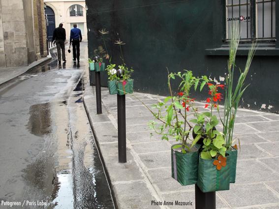 Potogreen-l'oeil-avisé rue du croissant - végétalisation urbaine Paris Label - Mairie du 2e - Coopérative de rue de cirque - photo Anne mazauric