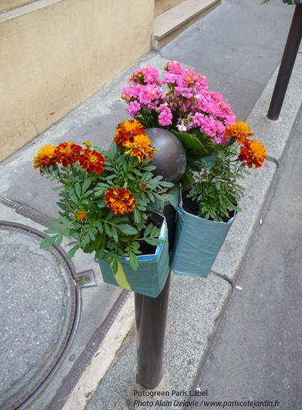 Potogreenrue du Hanovre pris en photo par Alain Delavie du site paris côté jardin. Potogreen est une création de Paule Kingleur / Paris Label