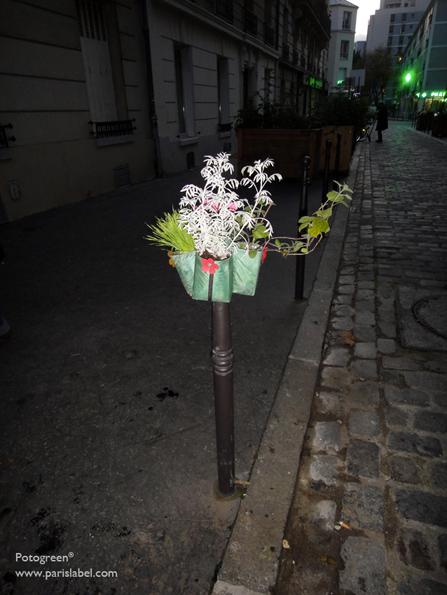 Dans la rue de l'Elysée Ménilmontant : Potogreen à la nuit tombante parmi le jardin partagé hors sol . Photo Paule Kingleur pour Paris Label