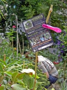 flyer Potogreen au Jardin Nomade 11e qui particpe à l'opération de végétalisation du 2e avec Paris Label et Paule Kingleur