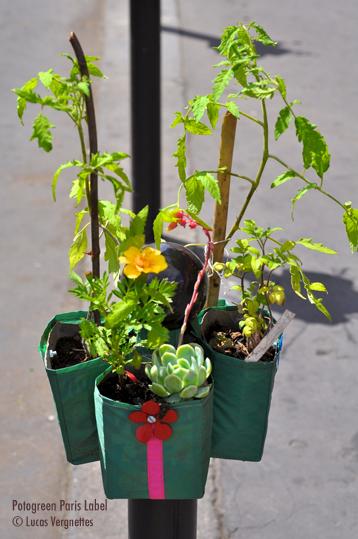 potogreen de l'insurrection végétale dans le 2e à Paris le dimanche 5 juin - Paris Label - photo Lucas Vergnettes