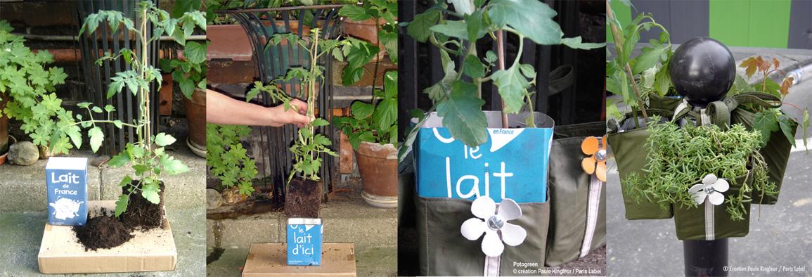 Mise en brique du Potogreen - Insurrection végétale provoquée par Paris Label / Paule Kingleur