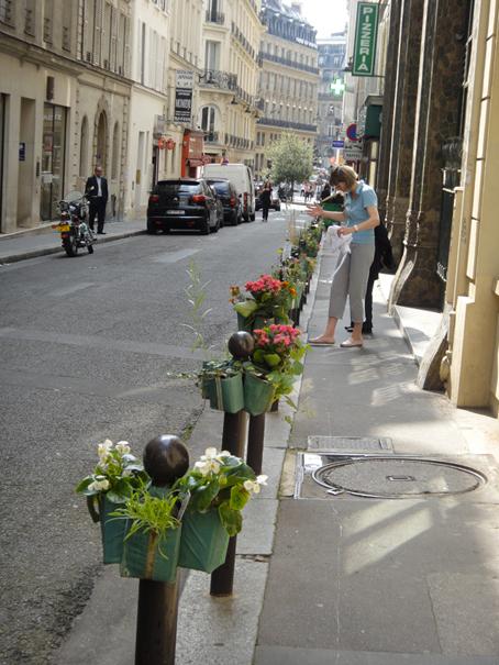 potogreen-rue-hanovre