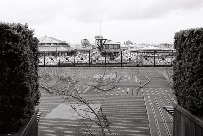 Branches de tilleul sur terrasse Louis Vuitton en attente d'installation de Paule Kingleur - photo Carine Tedesco