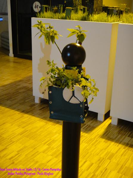 Potogreen Peace & Love réalisé par une ado lors de l'atelier Potobo/Potogreen de Paule Kingleur dans le cadre de l'Expo Green Attitude au Studio 13/16 du Centre Pompidou