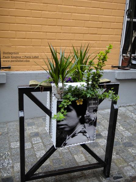 """Dadagreen sur grille anti-stationnement... pour une """"agriculture urbaine"""" à portée de tous"""