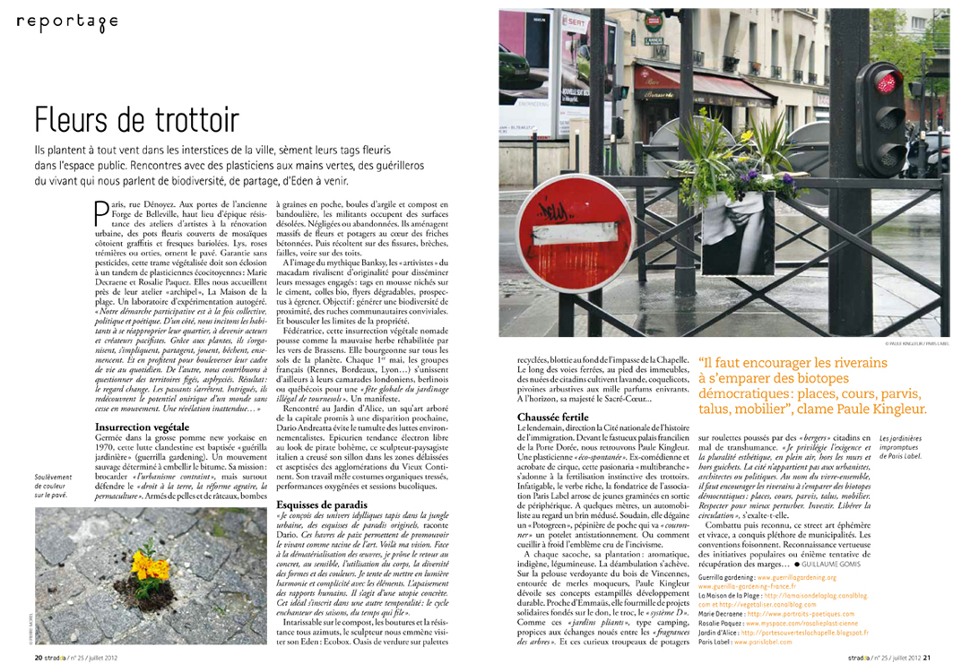 Stradda - Fleurs de trottoir, article de Guillaume Gomis - Paule Kingleur / Paris Label