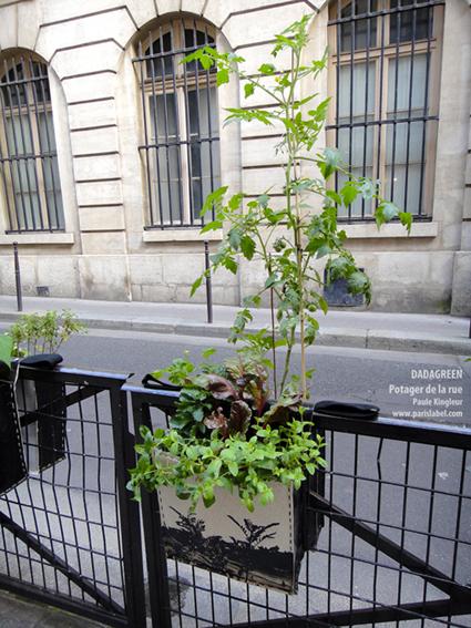Dadagreen lors de la Fête des Jardins 2012 - avec la Maison des Acteurs du Paris Durable et la complicité des Jardiniers de Gaïa - Création Paule Kingleur