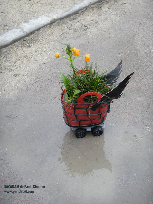 Prototype Sacadam, petit jardin ambulant dans sac de dame - création Paule Kingleur pour Paris Label