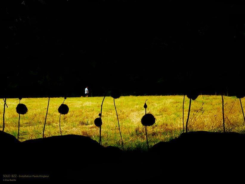 Solo Bzz - Installation de Paule Kingleur - Été 2013 dans l'Orne à la Maison du Paysage - photo Elsa Bazille