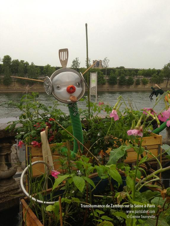 Transhumance Zambu à Jardins Jardin..